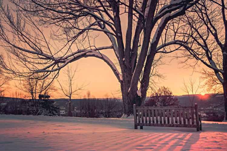 snow dawn sunset winter